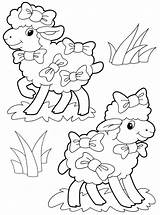 Sheep Coloring Colors Animals Animal Coloringtop sketch template