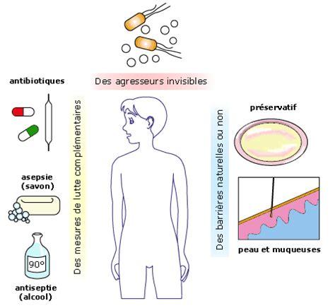 infection urinaire remede maison infection urinaire 10 rem 232 des maison traitement naturel de la cystite