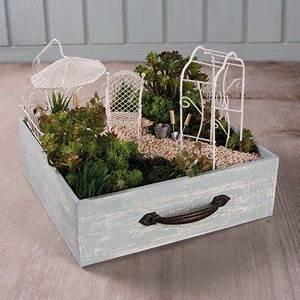 Minigarten Im Glas : islandmoos rayher ~ Eleganceandgraceweddings.com Haus und Dekorationen