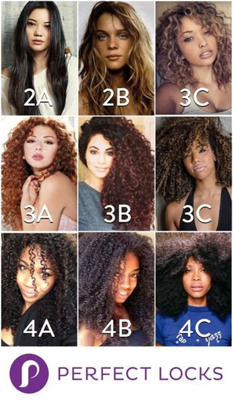 Categories Of Hair by Hair Types Finding Your Texture