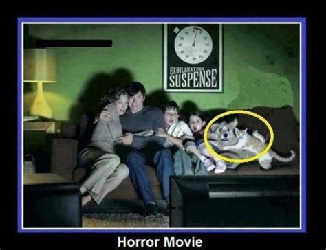 Funny Horror Memes - horror movie funny quotes quotesgram