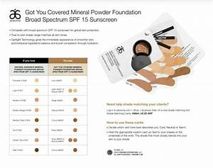 Arbonne Cosmetics Got You Covered Mineral Powder