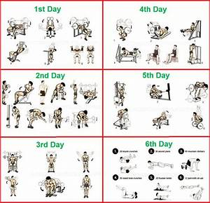 How To Build My Own Bodybuilding Workout Plan