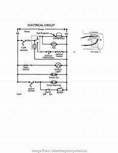 Rittal Thermostat Wiring Diagram New Norlake Walk In