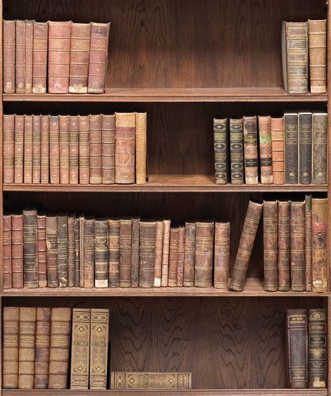 Bookcase Wall Paper by Bookshelf Removable Wallpaper Library Design Milton King