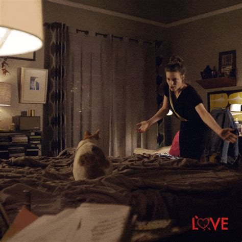 cat dance gifs find share  giphy