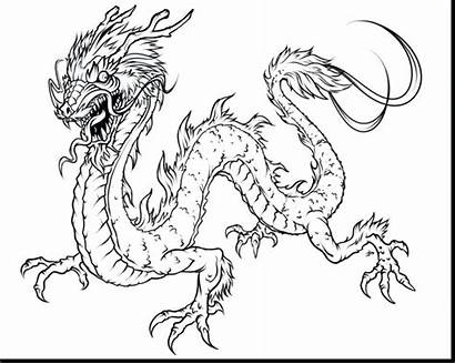 Endangered Coloring Pages Species Terrific Getcolorings Printable