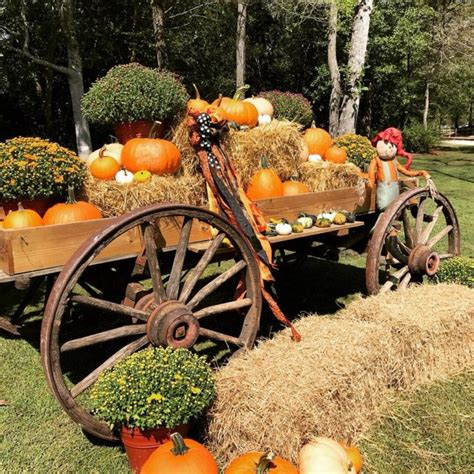 We did not find results for: 9 Best Pumpkin Patches in North Carolina To Visit In Fall 2017