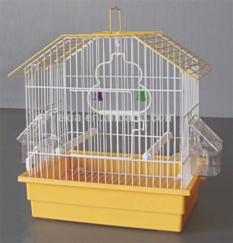 cool parrot cages cool parakeet cages related keywords cool parakeet cages long tail keywords keywordsking