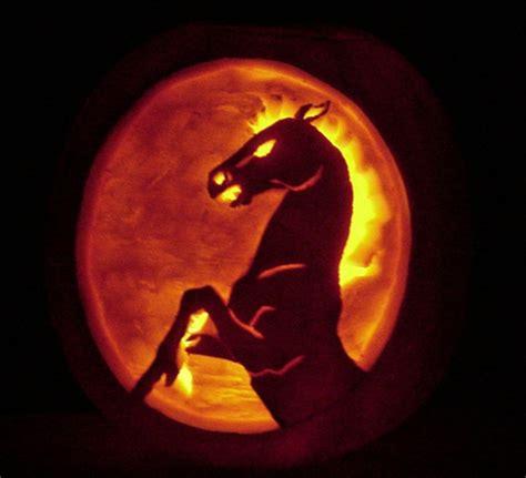 amazing horse pumpkins cowboy magic cowboy magic