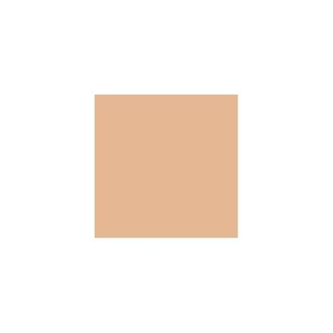 rustic adobe paint color rustic adobe sw7708 paint by sherwin williams modlar