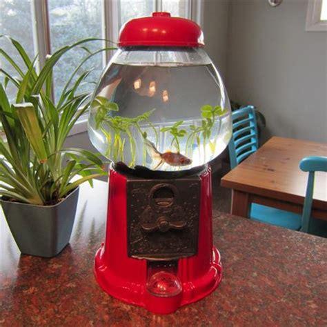 7 DIY Fish Aquarium Projects   DIY Craft Projects