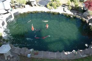 13 DIY Awesome Natural Backyard Pond Ideas For All Budgets ...