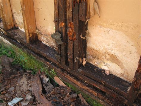 Dry Rot Repair Experts   Beisa's Legacy Construction
