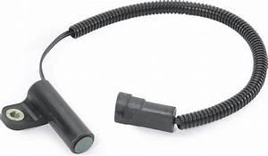 Crown Automotive 56027280 Crankshaft Position Sensor For
