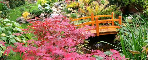 Gartentipps  Jansons Gartenexpress