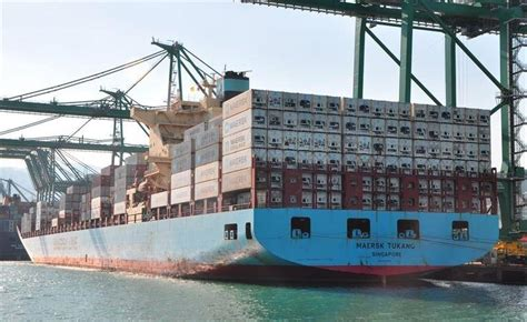 Overboard Containership Crewmember Missing In The Port