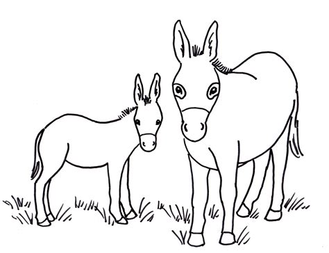 Balaam And The Talking Donkey Coloring Pages 1947651