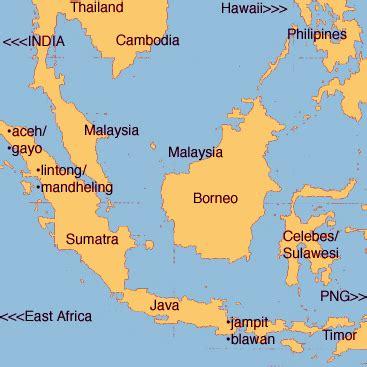 sumatra indonesia png hawaii raw coffee