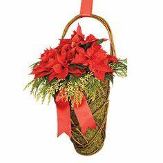 1000 images about xmas plant basket ideas on Pinterest