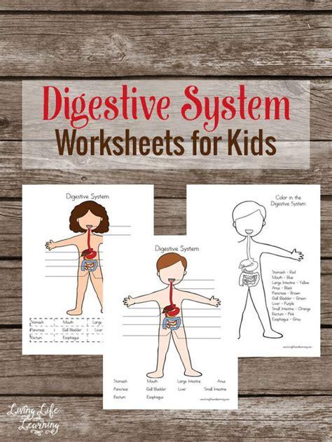 human body digestion pack  homeschool deals
