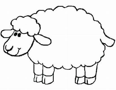 Lamb Clipart Outline Clipartion