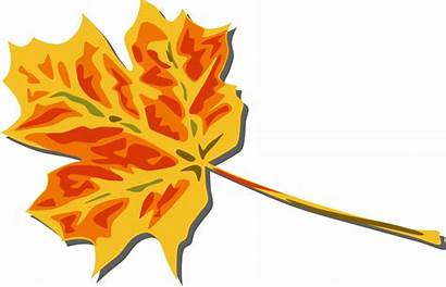 Leaves Fall Clip Autumn Leaf Clipart Onlinelabels