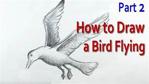 How To Draw A Bird Flying 2 Youtube