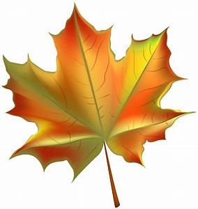Usa autumn leaves clipart - Clipground