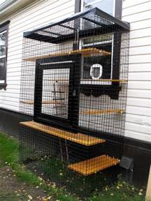 outdoor cat run how to build an outdoor cat run diy projects for everyone