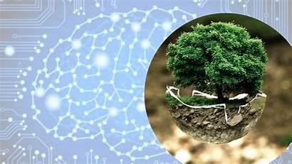 Ai Environment Artificial Intelligence Environmental Destroy Protect