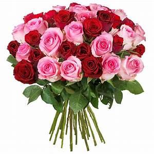 Begleitpflanzen Für Rosen : rosenstrau f r 20 gemischter strau langstieliger rosen ~ Lizthompson.info Haus und Dekorationen