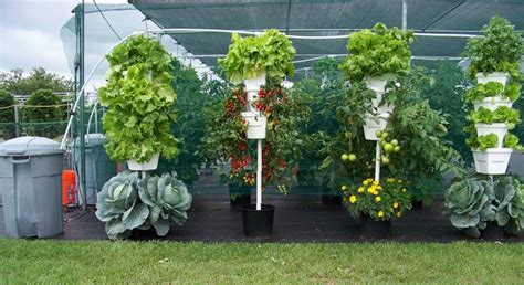 Vertical Hydroponic Gardening by 177 Best Hydroponic Gardening Images On
