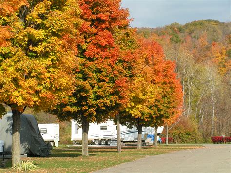 clute memorial park campground finger lakes region