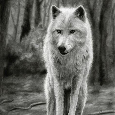 mejores  imagenes de hyper realistic pencil drawings en