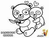 Coloring Panda Giant Popular sketch template