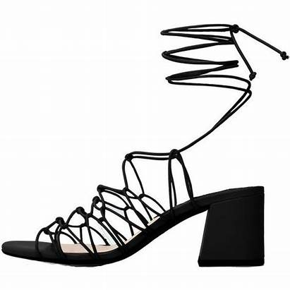 Sandals Strappy Clipart Heel Heels Lace Shoes