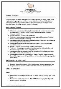 Over CV and Resume Samples with Free Download