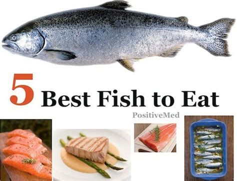 fish types  fish  seafood  pinterest