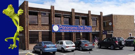 panorama pet shop     pets healthy