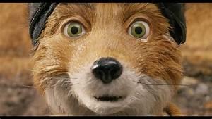 Mr Fox : p320 entry mr fox and me the truth about guns ~ Eleganceandgraceweddings.com Haus und Dekorationen