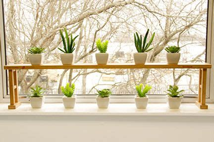 Window Sill Plant Shelf by Window Sill Extension Search Decor And Pics I