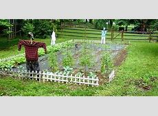 Choosing the Right Size Vegetable Garden Today's Homeowner