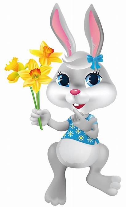 Easter Bunny Transparent Clipart Daffodils Pascoa Coelhinha