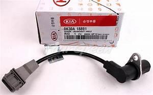 Genuine Crankshaft Position Sensor For Kia 01