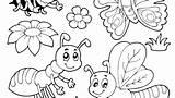 Bug Potato Coloring Volkswagen Beetle Template sketch template