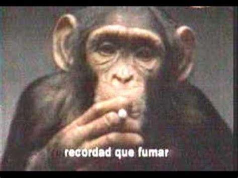 El Chango Fumador Locochon YouTube