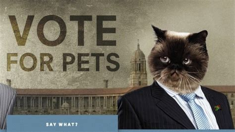 Sa Browser Add On Turns Politicians Into  Ee  Pets Ee   Htxt Africa