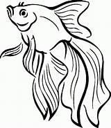 Coloring Fish Goldfish Clipart Swimming Gold sketch template
