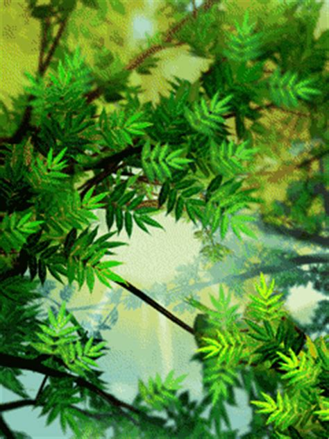 animated green leaves wallpaper